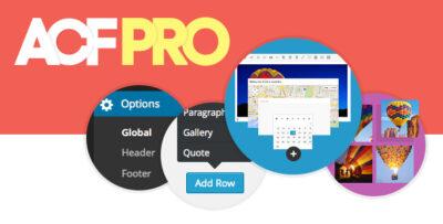 افزونه ACF Pro